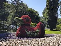 Pflanzenfigur Ente auf der Blumeninsel Mainau