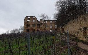 Burgruine Landskron bei Drachenwolke Geschichten, Sagen und Legenden rund um den Rhein