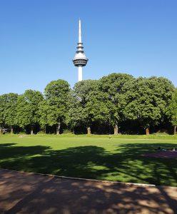 Quadratestadt Mannheim am Rhein - unterer Luisenpark