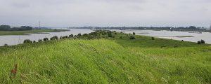 Gabelung Rhein in Pannerdens Kanal und  Waal