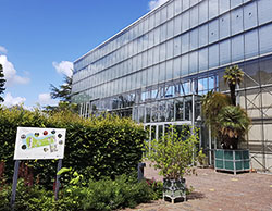 Hortus Botanicus Leiden - Botanischer Garten