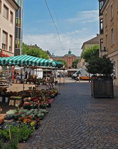 Markt mit Blick auf das Schloss in Rastatt