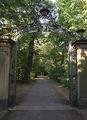 Hardtwald Karlsruhe