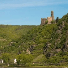Burg Maus im Mondlicht - Führung mit Verkostung