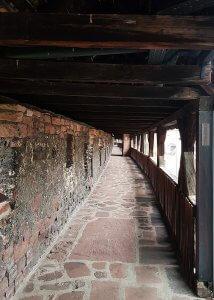 Nibelungenmuseum Worms bei Drachenwolke Geschichte und Legenden, Sagen und Infos über den Rhein