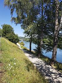 Weg entlang des Rheins bei dem Rheinfall in Schaffhausen