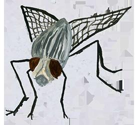 Schlappo, Osterwirbel, Fliege