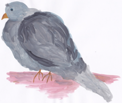 Taube Ludwig - eine Geschichte für Kinder
