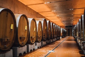 Eltville am Rhein Weinverkostung und Führung durch den Steinbergkeller
