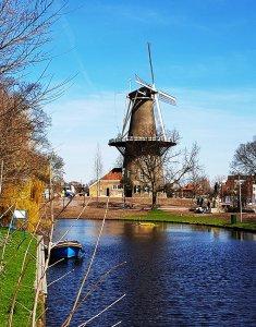Windmühle De Valk in Leiden am Rhein